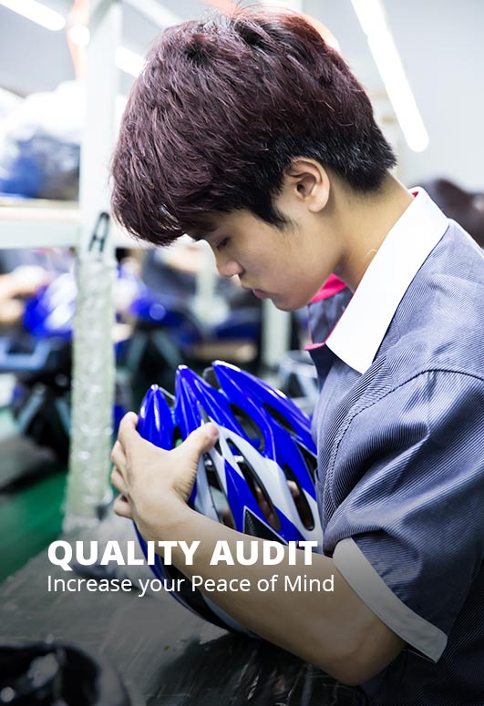 Quality Audit